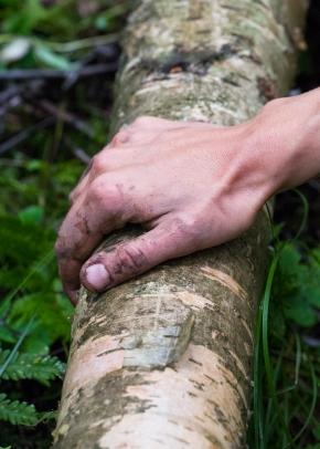 Bærekraftig materialbruk